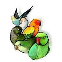 Bird Breeders in Texas